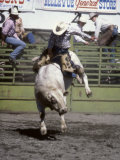 Bull Riding, Utah, USA Photographic Print