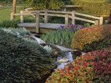 Ladew Topiary Gardens and Manor House, Jacksonville, Maryland Photographic Print