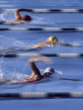 Swimmers Racing Photographic Print