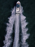 Aerial View of a Boat's Wake Photographic Print