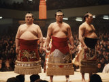 Sumo Wrestler Photographic Print