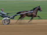 Red Mile Harness Track, Lexington, Kentucky, USA Photographic Print