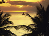 St. Lucia Photographic Print