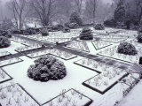 Dumbarton Oaks Garden, Washington Dc, USA Photographic Print