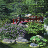 Japanese Garden, Monte Carlo, Monaco Photographic Print