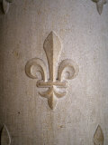 Fleur-de-lis Carved on Stone Photographic Print