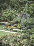 Butchart Gardens, Victoria, British Columbia, Canada Photographic Print