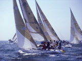 Racing Yachts Newport Rhode Island, USA Fotografie-Druck