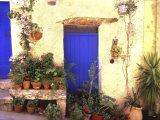 La Cadiere D'Azur Provence, France Photographic Print