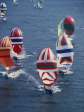 Colorful Sailboats Fotografisk trykk