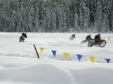 Motorcycle Racing in the Snow Photographic Print
