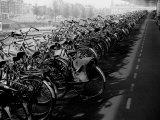 Centraal Station, Amsterdam, Netherlands Lámina fotográfica