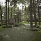 Golf Course Photographic Print