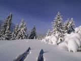 Banff National Park, Alberta, Canada Photographic Print