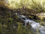 Wooden Bridge Over a Flowing Stream Photographic Print