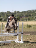 Training a Show Jumper Photographic Print