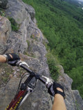 View of the Forest from a Mountian Bike Photographic Print