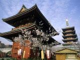 Sensoji Temple, Asakusa, Tokyo, Japan Photographic Print