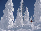 Steamboat Springs, Colorado, USA - Fotografik Baskı