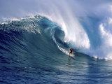 Distant Surfer Reprodukcja zdjęcia