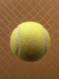 Tennis Ball Against a Racquet Photographic Print