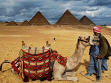 An Egyptian Man Rests His Camel Waiting for Locals and Tourists to Rent It Photographic Print