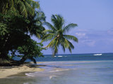 Cape Samana, Dominican Republic Photographic Print