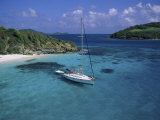 Tobago Crays, the Grenadines Fotografie-Druck