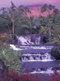 Tabacon Hot Springs, Arenal Volcano, Costa Rica Photographic Print by Nik Wheeler