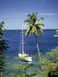 Sourfriere, Saint Lucia Photographic Print