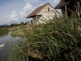 Houses Along the Louisiana Bayou are Seen Photographic Print