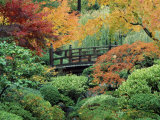 Japanese Gardens, Portland, Oregon, USA Photographic Print
