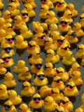 The Make-A-Wish Foundation Releases Rubber Ducks into the Ocean Photographic Print