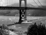 Golden Gate Bridge on Opening Day of the Yacht Season Photographic Print