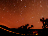 Four Leonid Meteors are Seen Streaking Through the Sky Over Joshua Tree National Park, Calif. Photographic Print