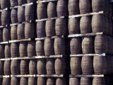 Bacardi Rum Ages in Oak Barrels, San Juan, Puerto Rico Photographic Print by Michele Molinari