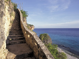 1,000 Steps Limestone Stairway in Cliff, Bonaire, Caribbean Photographic Print by Greg Johnston