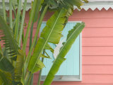 Palm and Pineapple Shutters Detail, Great Abaco Island, Bahamas Photographic Print by Walter Bibikow
