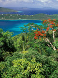Magens Bay, St. Thomas, Caribbean Photographic Print by Robin Hill