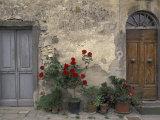 Tuscan Doorway in Castellina in Chianti, Italy Fotografisk tryk af Walter Bibikow