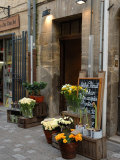 Florist Shop, Languedoc-Roussillon, France Photographic Print by Lisa S. Engelbrecht