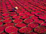 Keren Su - Sepetlerde Şeker Kurutma, Vietnam - Fotografik Baskı
