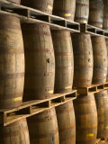 Aging Casks at Bacardi Rum Factory, Bahamas, Caribbean Photographic Print by Walter Bibikow