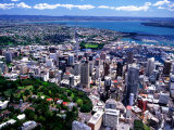 Albert Park and Auckland CBD, New Zealand Photographic Print by David Wall