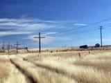 Praire Road, Saskatchewan, Canada Photographic Print by Walter Bibikow