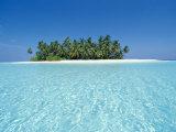 Isola tropicale disabitata, atollo di Ari, Maldive Stampa fotografica di Stuart Westmoreland