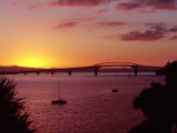 Auckland Harbour Bridge and Waitemata Harbour at Dusk, New Zealand Photographic Print by David Wall