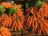 Carrots, Metkovic, Dalmatia, Croatia Photographic Print by Russell Young