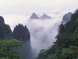 Landscape of Mt. Huangshan (Yellow Mountain) in Mist, China Fotografie-Druck von Keren Su