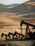 Oil Pumps Work the Midway Sunset Oil Field West of Taft, Calif. Photographic Print